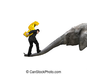 Businessman carrying dollar sign balancing on elephant trunk...