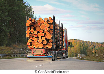 Logging Truck on Rural Road - Rear view of logging truck on...