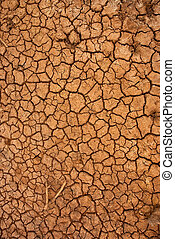 Dry cracked ground surface