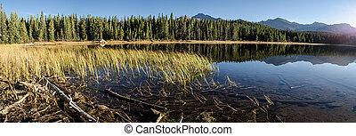 Grass and Colorado Lake Panorama - A panoramic shot of...