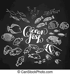 Collection of ocean fish drawn in line art style isolated on...