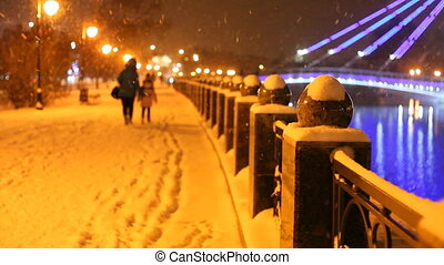 winter landscape of city park at night