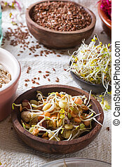 Healthy seeds and sprouts - Colourful and healthy crunchy...