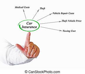 Diagram of Car Insurance