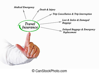 Diagram of Travel Insurance