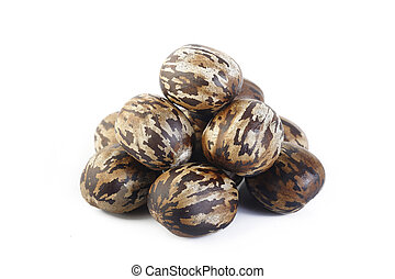 Para rubber seeds on white background