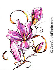 Magnolia blossom on branch.Picture I have created myself...