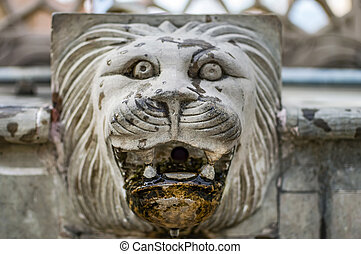 Stone head of lion for water