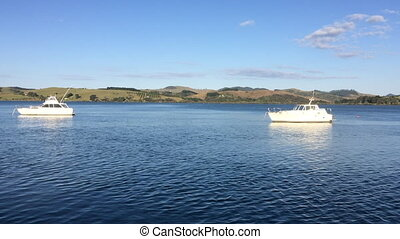 Mangonui Harbour New Zealand - Landscape view of Mangonui...