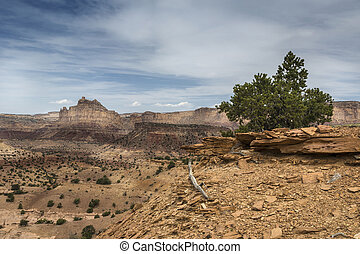 Reds Canyon in the San Rafael Swell - Colorful Reds Canyon...