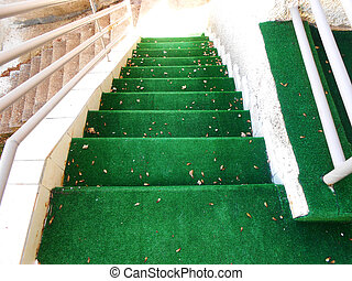 Green staircase with tree sheets above