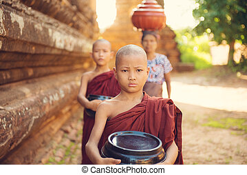 Buddhist novice monks collecting foods
