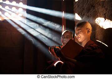 Young Buddhist novice monks reading - Young Buddhist novice...