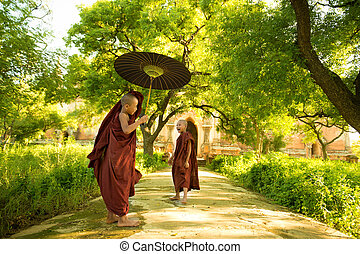 Young Buddhist novice monks - Two little Buddhist novice...