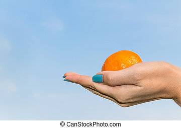 Beautiful female hands with the orange on the sky