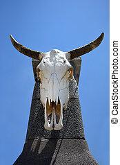bull skull hanging on a concrete pillar