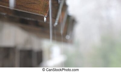Water drops falling from roof