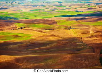 Scenic Step Toe Landscape in the Easter Washington State....