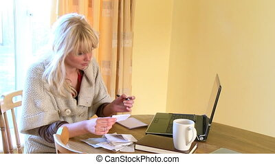 Serious woman doing her accounts - Concentrated woman doing...