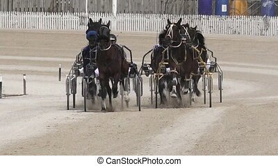 Harness racing - This video is about Dec 28