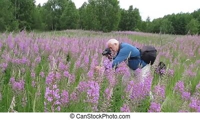 Photographer works. - Man moves in a meadow and pictures of...