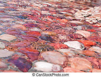 Water running over shallow pebbles creating a lovely effect...