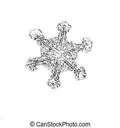 natural snowflake closeup isolated on a white background -...