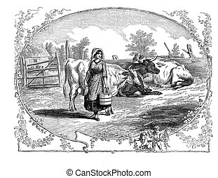 Farm life,cows and milk girl - XIX century engraving,...
