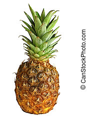 frontal pineapple image - fine image of pineapple isolated...