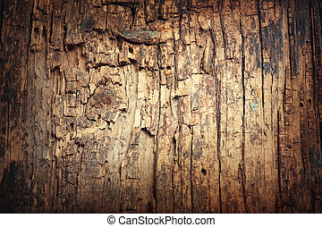 Old wooden cracked background