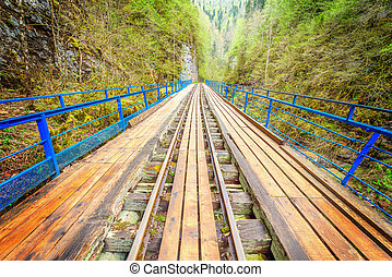 Bridge with the narrow gauge railway. Guama gorge. Caucasus....