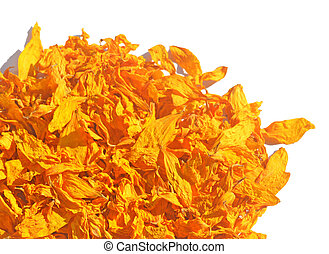Dried petals of sunflowers
