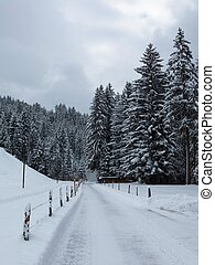 Snow covered road and forest