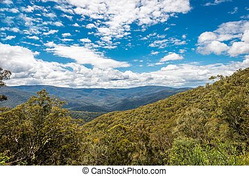 High Country, Foresty Valley, Victoria, Australia