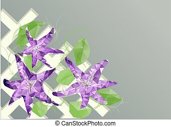 clematis on fence - clematis. abstract triangular flowers oh...
