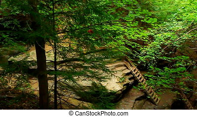 Turkey Run State Park Bear Hollow - Ladders on a rugged...