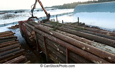 View of unloading logs at sawmill in winter time
