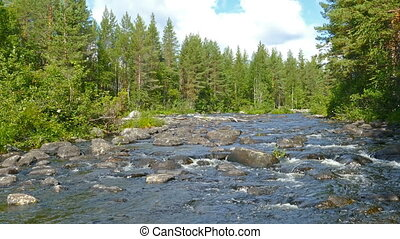 landscape with river and forest in Karelia