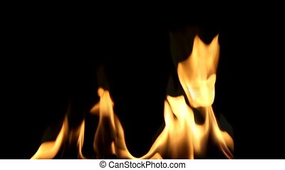 Beautiful Fire on Black background Easy integration into...