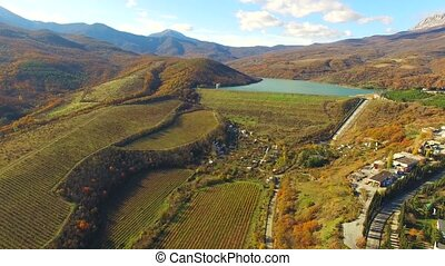 AERIAL VIEW. Hilly Terrain With Grape Fields