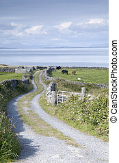 Open Countryside near Kilronan on Inishmore, Aran Islands,...