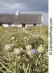 Traditional Cottage, Inishmore; Aran Islands; Ireland