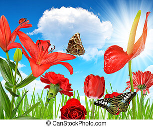 Red flowers with butterflies