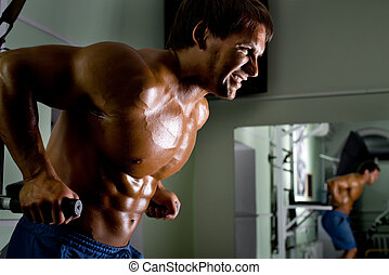 bodybuilder - the very muscular sporty guy drinking protein...
