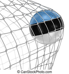 Estonian soccerball in net Image with clipping path