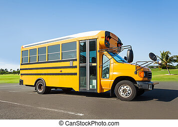 School buss standing on the parking near field clean...
