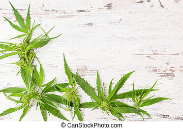 Cannabis with copy space. Buds and leaves on white wooden...