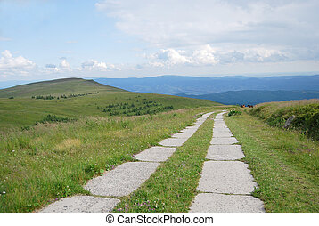 concrete paved road  - The road in the Carpathian mountains