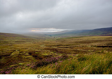 Wicklow Mountains in Ireland - Wicklow Mountains near Dublin...