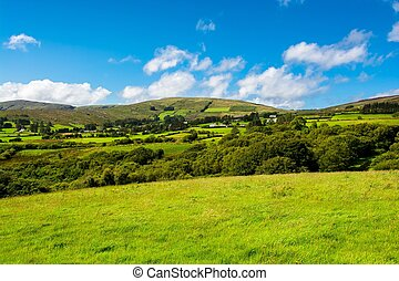Agricultural Landscape in Ireland